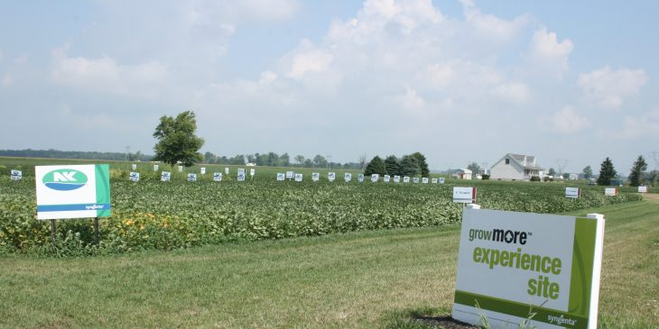 Grow More Experience Sign NK Soybeans Sign