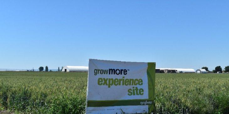 Grow More Experience - Ephrata
