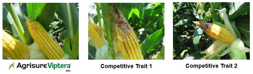 Competitive Trait Comparison - Agisure