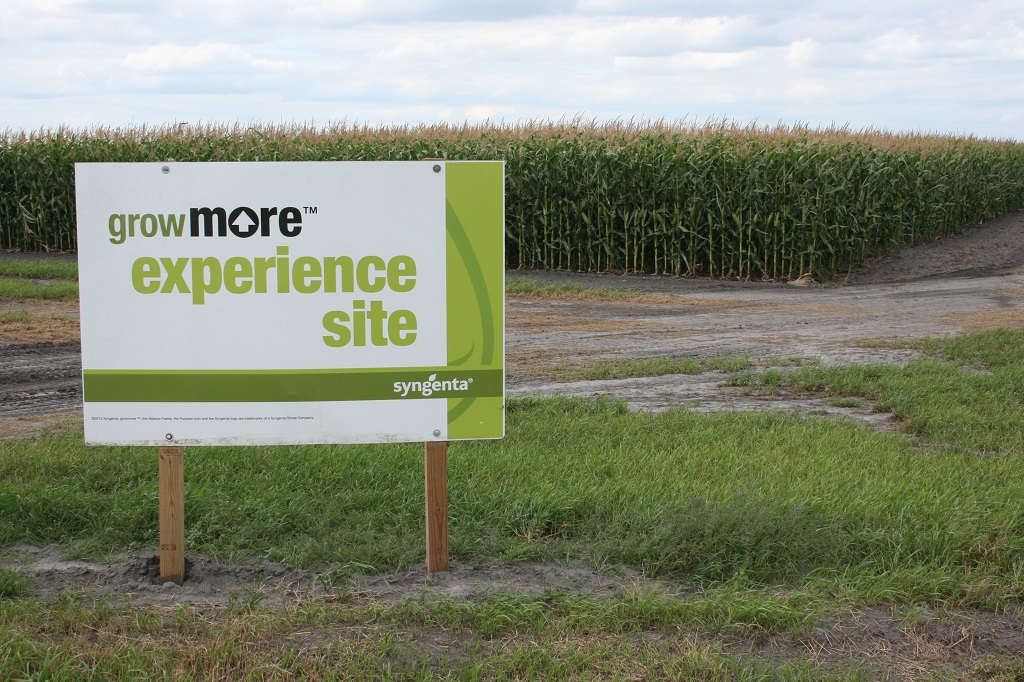 glyndon-grow-more-experience-sign