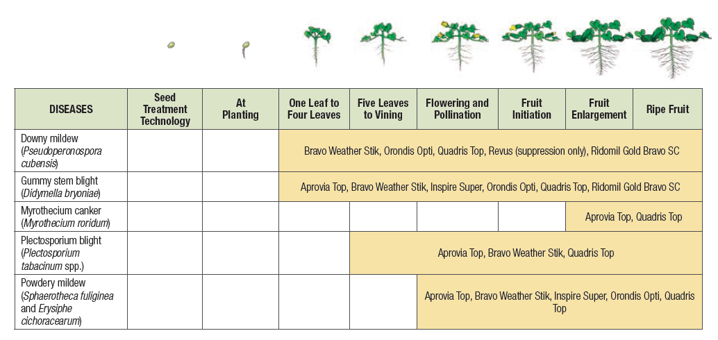 An agronomic chart showing fungicide recommendations for watermelon.