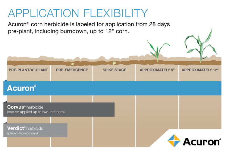 This image shows crop management and application flexibility of Acuron.