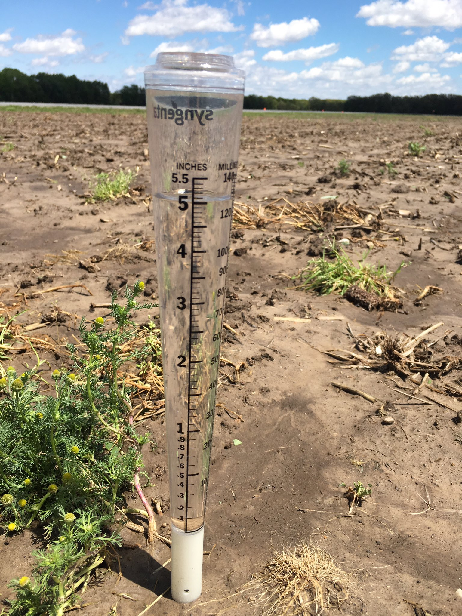 "This agronomic image shows a rain gauge with just over 5"" of rainfall from April 26 through May 2, 2017"