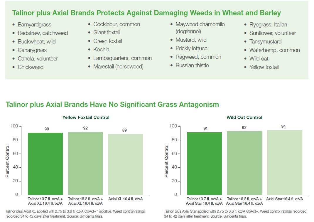 this image depicts crop management with Talinor plus Axial weed protection.