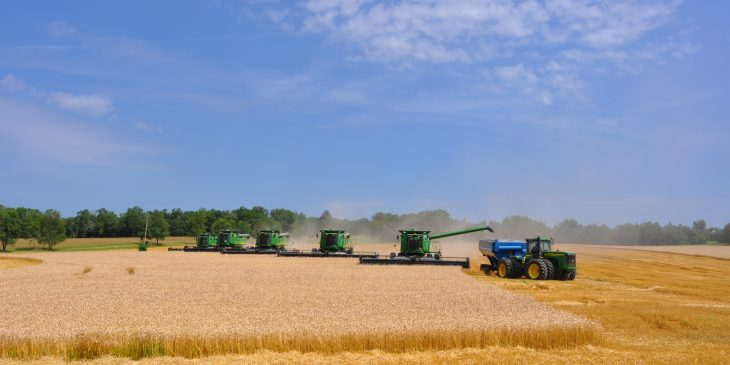 This agronomic image shows combines harvesting wheat.