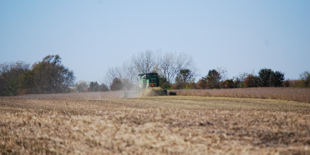 This agronomic image shows a combine harvesting soybeans.
