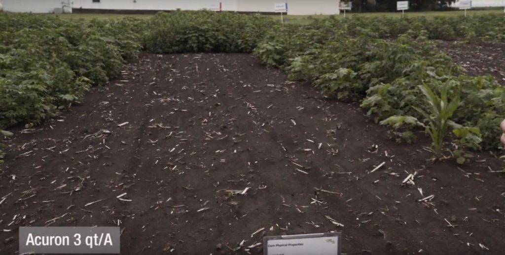 This agronomic image shows a full rate of Acuron applied to bare ground at the DeKalb, IL, Grow More Experience site.