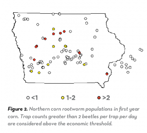 This data chart shows specifically the Northern corn rootworm populations per trap per day in Iowa.